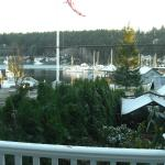 view of harbor from deck