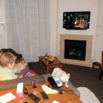 Dogs enjoying the fireplace and TV in our suite