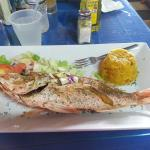 Snapper and mofongo