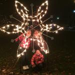Bronson Park Christmas Light Display