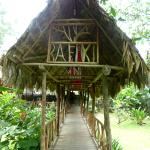 Foto de Rafiki Safari Lodge