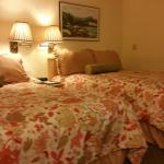 Foto de BEST WESTERN PLUS Elm House Inn
