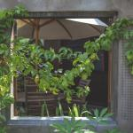 Looking inside the private garden of Bungalow 2