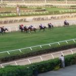 Eureka Palace Horse Racing