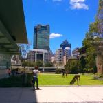 GOMA, Southbank cultural precinct etc. just a city cat ride away