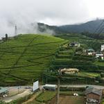 Фотография Misty View Cottage Home Stay Experience
