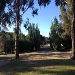 Lakes Entrance Country Cottages의 사진