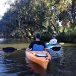 A beautiful morning on the water learning about manatees