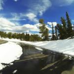 Photo of Mount Evans Scenic Byway