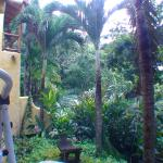Photo of Kalapiti Luxury Jungle Suites