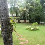 Photo of Vedanta Wake up! along the dreamy backwaters, Alleppey