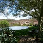 Foto de Bushmans Kloof Wilderness Reserve & Wellness Retreat