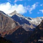 Manali - White Mist, A Sterling Holidays Resortの写真