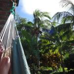 Nice view from the hammock outside our door