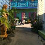 Creole Gardens Guesthouse Bed & Breakfast Foto