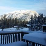 Morning view from our chalet's back deck