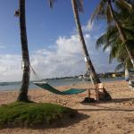 Photo de Cocoplum Beach Hotel