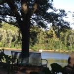 View of the lake from outside tables