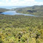 View from Waitakere Ranges Regional Park
