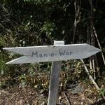 sign to man o war