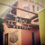 Tribu Hostel의 사진