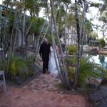 Our small intimate ceremony near the pool