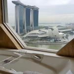 Photo de The Ritz-Carlton, Millenia Singapore
