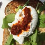 Poached eggs and homemade Harissa