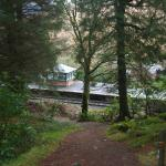 Start of forest trail from Tarbet to Arrochar.