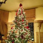 Christmas tree in lovely living room in lobby