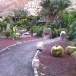Photo of Paradise Costa Taurito