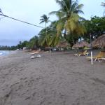 Turtle Beach by Rex Resorts resmi