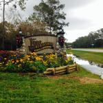 The Campsites at Disney's Fort Wilderness Resort resmi
