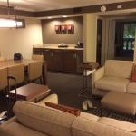 Living room area in the Ambassador suite, showing wetbar and conference table.