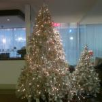 The lobby at Xmas time