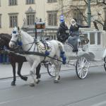 One of many horse & carriage available in Main Square