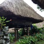 Ifugao native houses (It's the rooms actually)
