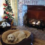 What could be more cozy on a cold December day?