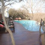 Foto de Makanyane Safari Lodge