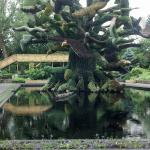 Photo of Montreal Botanical Gardens