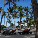 Photo de Barcelo Bavaro Beach