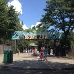 Photo of Bronx Zoo