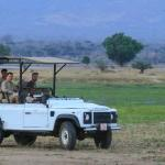 game drive in perfection