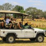 another perfect game drive