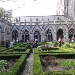 Inside the grounds of the Dom church