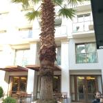 Photo of Electra Palace Hotel Athens