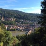 view (of Heidelberg) from the top