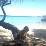 Waialea Beach.  Look how close the water is to the shade and trees!