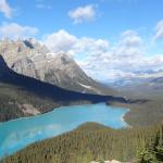 Photo of Peyto Lake