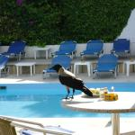 Photo de Rhodos Beach Hotel